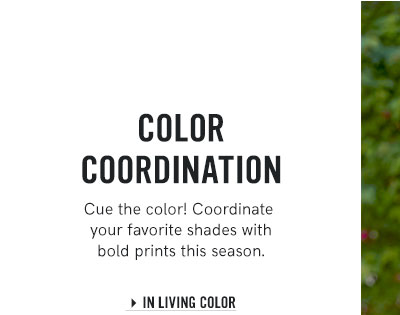 Browse our new In Living Color collection.